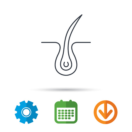 rinse: Trichology skin icon. Dermatology hair sign. Calendar, cogwheel and download arrow signs. Colored flat web icons. Vector