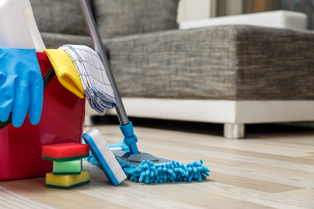 sirviente: Cleaning service. Bucket with sponges, chemicals bottles and mopping stick. Rubber gloves and towel. Household equipment.