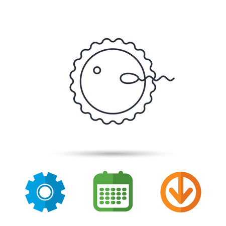 spermatozoid: Fertilization icon. Pregnancy sign. Spermatozoid and egg symbol. Calendar, cogwheel and download arrow signs. Colored flat web icons. Vector