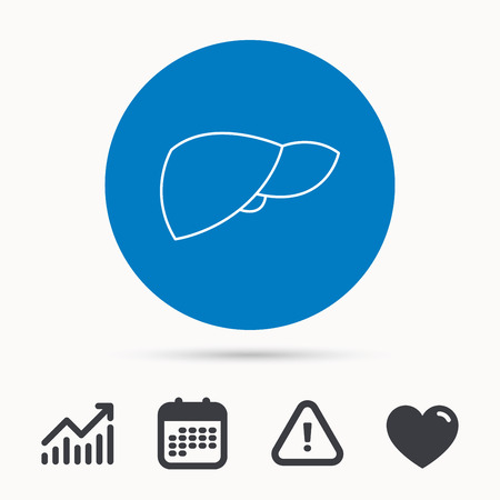 Liver icon. Transplantation organ sign. Medical hepathology symbol. Calendar, attention sign and growth chart. Button with web icon. Vector