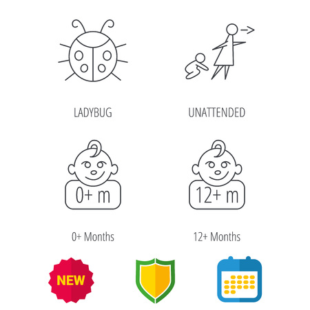 Infant child, ladybug and 0+ months child icons. Unattended child linear sign. Shield protection, calendar and new tag web icons. Vector