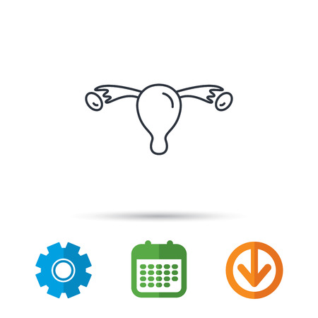 gynaecology: Uterus icon. Ovary sign. Gynecology health symbol. Calendar, cogwheel and download arrow signs. Colored flat web icons. Vector Illustration