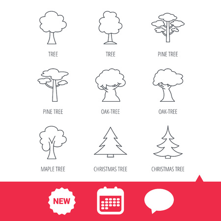 Pine tree, maple and oak icons. Christmas trees linear signs. Forest trees flat line icons. New tag, speech bubble and calendar web icons. Vector