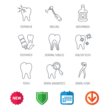 Tooth, stomatology and toothache icons. Mouthwash, dental pliers and diagnostics linear signs. Dentinal tubules, drilling icons. New tag, shield and calendar web icons. Download arrow. Vector Illustration