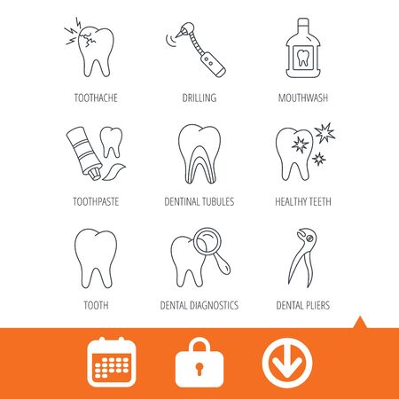 Tooth, stomatology and toothache icons. Mouthwash, dental pliers and diagnostics linear signs. Dentinal tubules, drilling icons. Download arrow, locker and calendar web icons. Vector Illustration