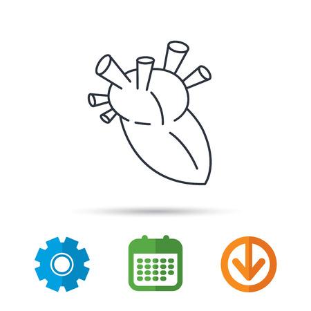gearwheel: Heart icon. Human organ sign. Surgical transplantation symbol. Calendar, cogwheel and download arrow signs. Colored flat web icons. Vector Illustration