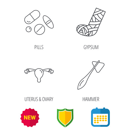 doctor tablet: Hammer, broken leg and medical pills icons. Uterus and ovary linear sign. Shield protection, calendar and new tag web icons. Vector Illustration