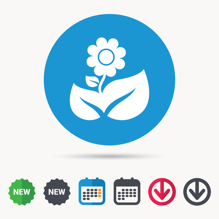 new plant: Flower icon. Florist plant with leaf symbol. Calendar, download arrow and new tag signs.