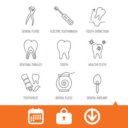 Tooth extraction, electric toothbrush icons. Dental implant, floss and dentinal tubules linear signs. Toothpaste icon. Download arrow, locker and calendar web icons. Vector