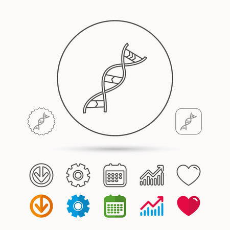 DNA icon. Genetic evolution structure sign. Biology science symbol. Calendar, Graph chart and Cogwheel signs. Download and Heart love linear web icons. Vector Illustration