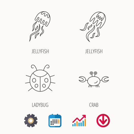 inhabitants: Jellyfish, crab and ladybug icons. Ladybird linear sign. Calendar, Graph chart and Cogwheel signs. Download colored web icon. Vector Illustration