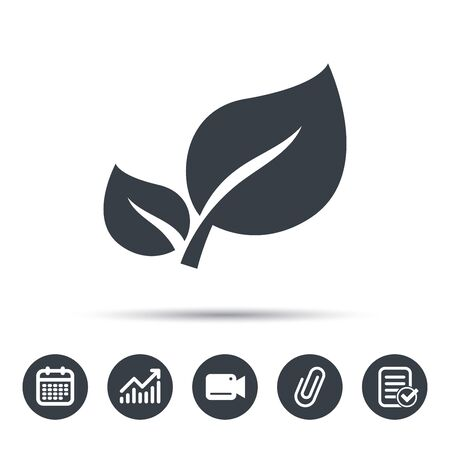 attached: Leaf icon. Fresh organic product symbol. Calendar, chart and checklist signs. Video camera and attach clip web icons. Vector Illustration