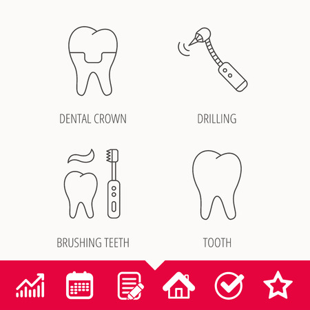 whiten: Brushing teeth, tooth and dental crown icons. Drilling tool linear sign. Edit document, Calendar and Graph chart signs. Star, Check and House web icons. Vector