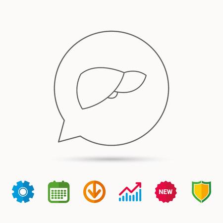 Liver icon. Transplantation organ sign. Medical hepathology symbol. Calendar, Graph chart and Cogwheel signs. Download and Shield web icons. Vector