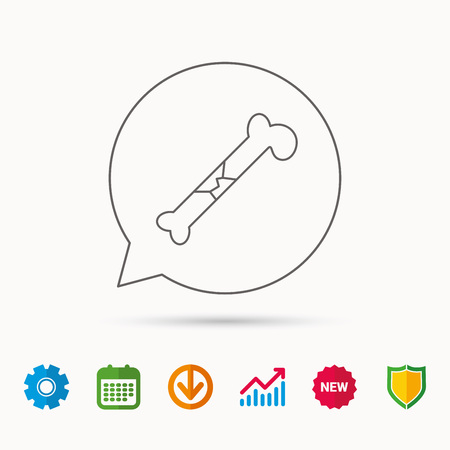osteo: Bone fracture icon. Traumatology sign. Human bone break. Calendar, Graph chart and Cogwheel signs. Download and Shield web icons. Vector Illustration