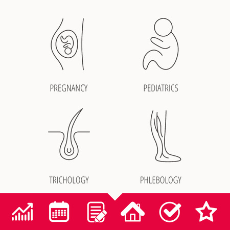 Pregnancy, pediatrics and phlebology icons. Trichology, vein varicose linear signs. Edit document, Calendar and Graph chart signs. Star, Check and House web icons. Vector