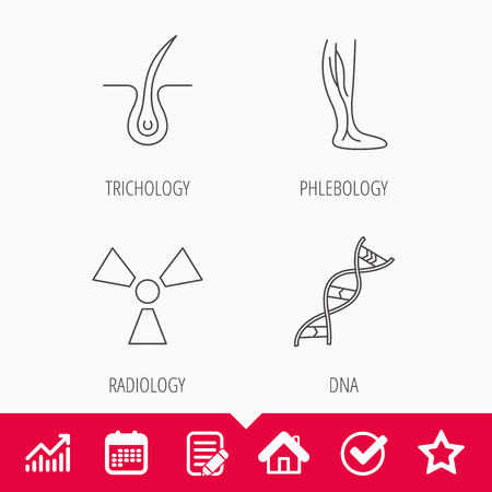 Phlebology, trichology and DNA icons. Radiology linear sign. Edit document, Calendar and Graph chart signs. Star, Check and House web icons. Vector