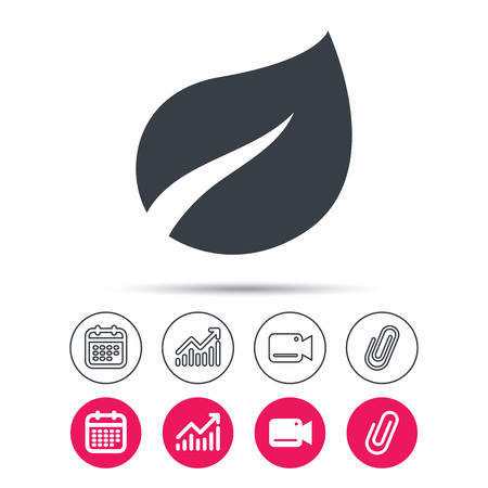 Leaf icon. Fresh organic product symbol. Statistics chart, calendar and video camera signs. Attachment clip web icons.
