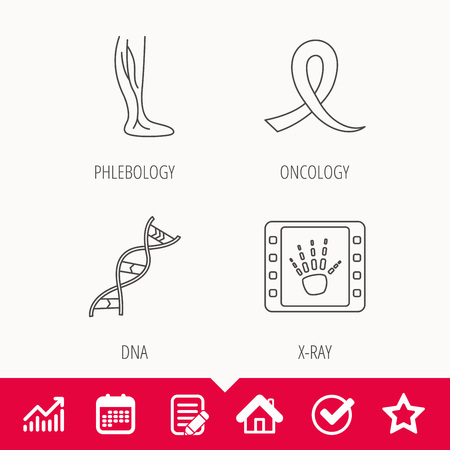 Phlebology, DNA and X-ray icons. Oncology awareness ribbon linear sign. Edit document, Calendar and Graph chart signs. Star, Check and House web icons.