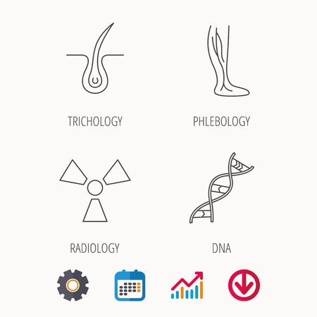 Phlebology, trichology and DNA icons. Radiology linear sign. Calendar, graph chart and cogwheel signs. Download colored web icon. Vector illustration.