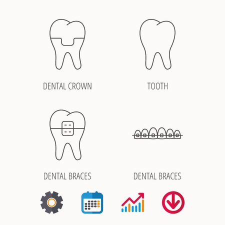 Cat Dental Chart