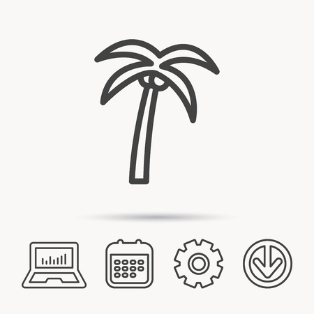 Palm tree with coconuts icon. Travel or vacation symbol. Nature environment sign. Notebook, Calendar and Cogwheel signs. Download arrow web icon. Vector
