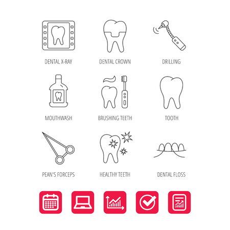 Stomatology, tooth and dental crown icons. X-ray, mouthwash and dental floss linear signs. Toothache, forceps icons. Report document, Graph chart and Calendar signs. Laptop and Check web icons. Vector