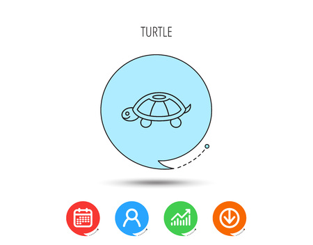 Turtle icon. Tortoise sign. Tortoiseshell symbol. Calendar, User and Business Chart, Download arrow icons. Speech bubbles with flat signs. Vector