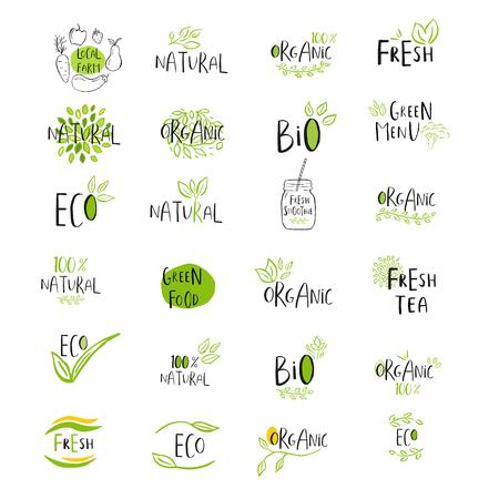 Conjunto de vector eco, bio logo verde o signo. Vegano, crudo, insignia de alimentos saludables, etiqueta para cafetería, restaurantes, empaquetado de productos. Dibujado a mano las hojas, ramas, elementos de plantas con letras. Plantilla de diseño orgánico.