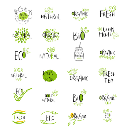 Set of vector eco, bio green logo or sign. Vegan, raw, healthy food badge, tag for cafe, restaurants, products packaging. Hand drawn leaves, branches, plant elements with lettering. Organic design template.