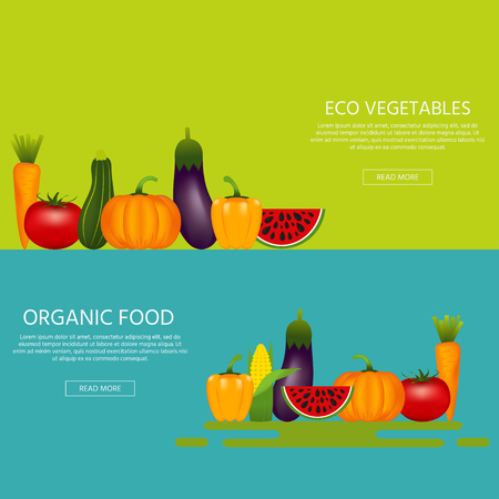 Collection of realistic healthy vegetables  such as: watermelon, carrot, tomato, pepper, eggplant, pumpkin, marrow, zucchini Quality vector banner about diet eco food