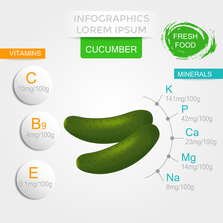 Healthy vegetables infographics with cucumber, vitamins and minerals. Quality vector illustration about diet, eco food, benefits of vegan and nutrition concept.