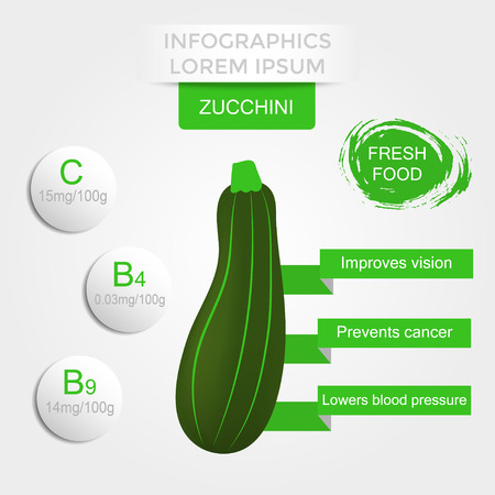 Healthy vegetables infographics with marrow, vitamins and minerals. Quality vector illustration about diet, eco food, benefits of vegan and nutrition concept.
