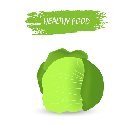 Healthy cabbage  isolated on white background, vegetables, vitamins and minerals. Quality vector illustration about diet, eco food, benefits of vegan and nutrition concept.