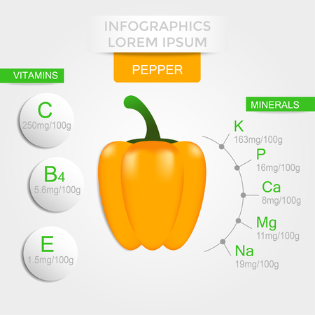 Healthy vegetables infographics with pepper, vitamins and minerals. Quality vector illustration about diet, eco food, benefits of vegan and nutrition concept.