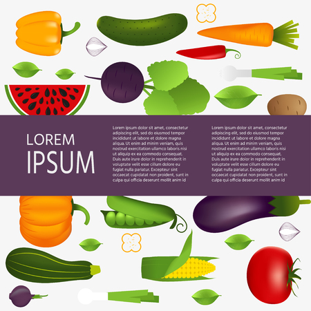 Collection of realistic healthy vegetables such as: carrot, tomato, pepper, eggplant, pumpkin, marrow, zucchini. Quality vector banner about diet, eco food Illustration