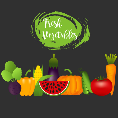Collection of realistic healthy vegetables such as: carrot, tomato, pepper, eggplant, pumpkin, marrow, zucchini.