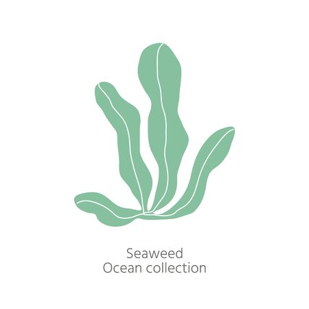 Logo of underwater seaplants and seaweed,  marine plant isolated  for fabric, textile, wallpaper, nursery decor, prints, childish background. Vector botanical flora