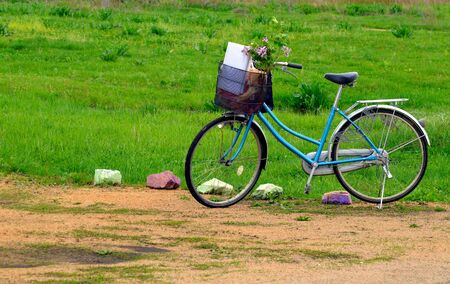 Blue bicycle with a basket and flowering branches of lilac on background of grass on a summer day. Copy space Фото со стока
