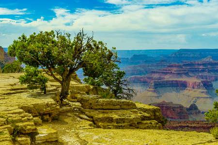 toroweap: Grand Canyon National Park Mother Point and Amphitheater, Arizona, USA Stock Photo