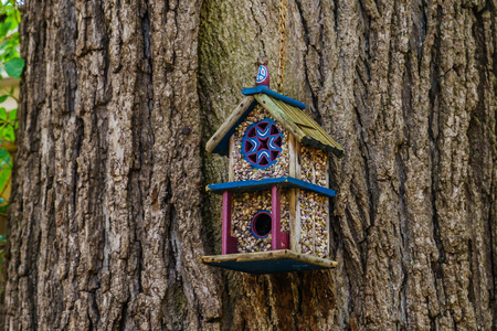 Beautiful wooden bird house on tree in New Hope, USA Stock Photo