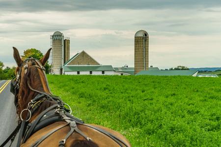 ランカスター、PAのアーミッシュカントリーファームファーム農業とホース