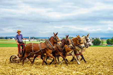 Lancaster, Pennsylvania - October 4, 2016 Amish country horse farm barn field agriculture in Lancaster PA