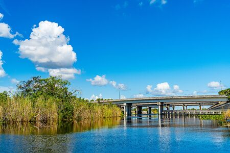 Everglades wetland in Florida, Everglades and Francis S. Taylor Wildlife Management Area.