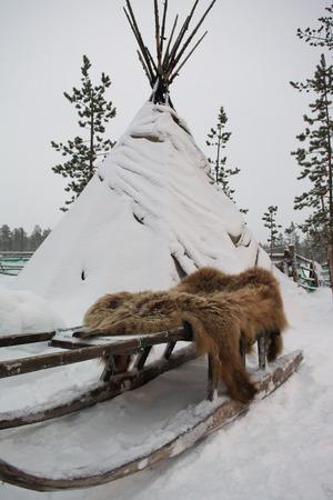 saami: Sami tent, sledges and bearskin