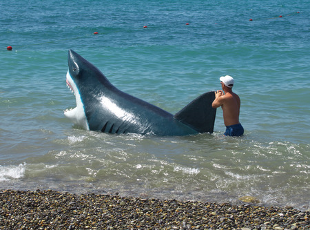 hoax: Sochi, Russia - June 30, 2014: Man walks with a hoax sharks in the water along the beach in Sochi