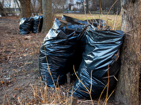 The garbage sacks standing in the park after spring cleaning Stock Photo