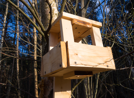 thorough: Homemade bird feeders made of wooden bars