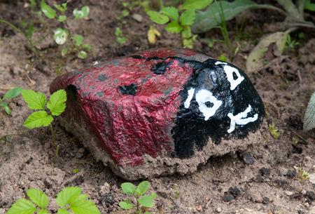 무당 벌레는 정원 음모 꾸미기를 위해 작은 돌에서했다.