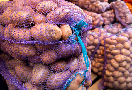 New crop potatoes packed in mesh bags